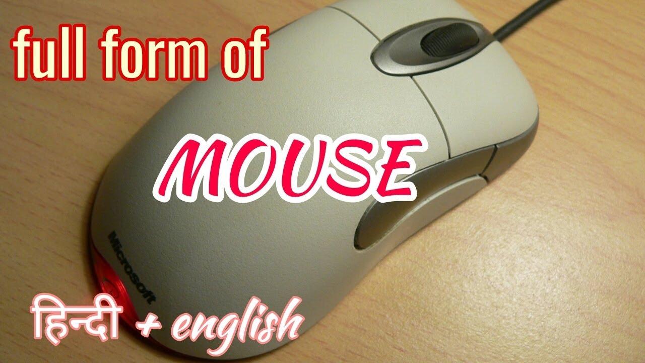 Mouse Ka Full Form In English म उस क प र न ह द