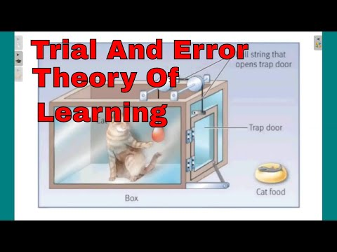 trial and error theory of learning