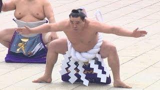 大相撲の白鵬、日馬富士の両横綱が8日、東京都渋谷区の明治神宮で、初...