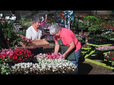 Bookcliff gardens nursery and gardening center in grand junction co youtube for Bookcliff gardens grand junction colorado