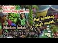 #Terbaru #Virall PAMER BOJO ● New K@rista (tak gintak gintak)