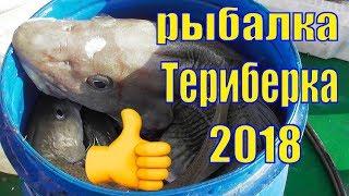 Морская рыбалка в Баренцевом море/ Териберка 17 апреля 2018 /Треска/Рыбалка в Мурманске/Кильдин