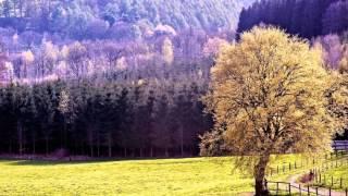 Самая красивая природа и музыка  .Фильм  18й  Натальи Егоровой