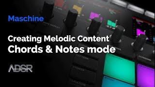 Maschine Mk3 - Creating melodic content with the chords & notes modes