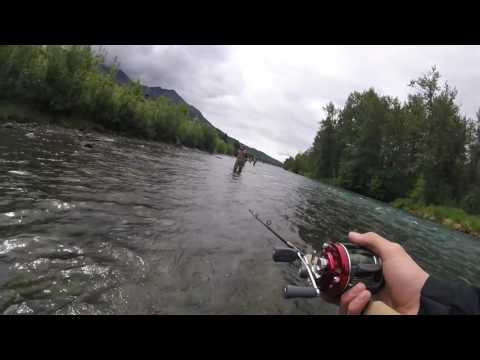 Fishing Red Salmon On The Kenia River In Southern Alaska! Limited Out