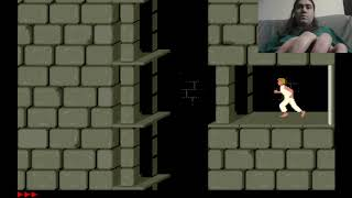 Prince of Persia (ms-dos) Speedrun - 17:29 IGT
