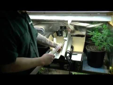 100% Indoor  Organic Growing Series Pt/1 Clean Light Pro