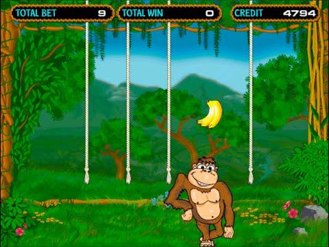 Игра crazy monkey играть онлайн