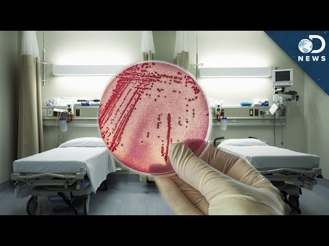 Why Superbugs Thrive In Hospitals