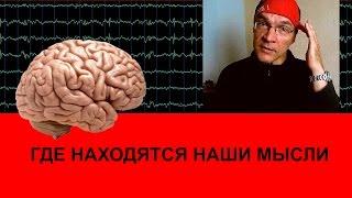 Мозг. Где находятся мысли
