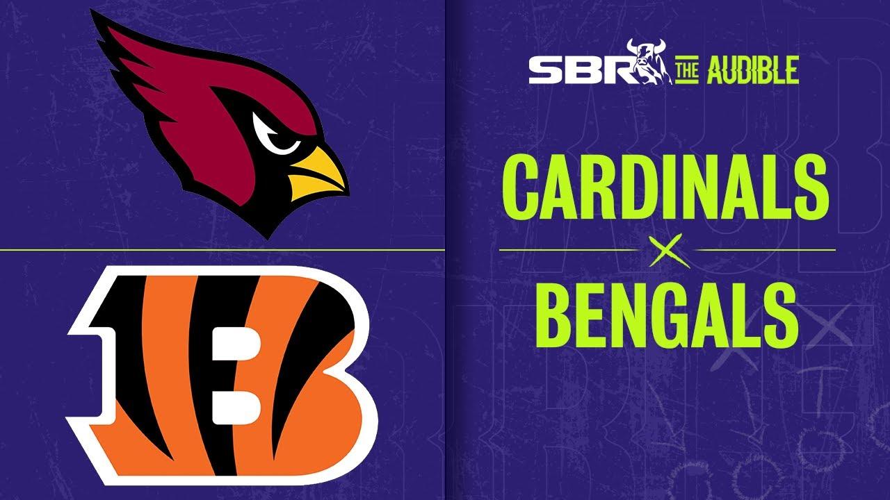 Stubhub cardinals bengals betting bizmove binary options