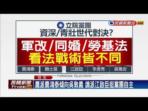 青壯派勝出!江啟臣當選國黨立院黨團總召-民視新聞