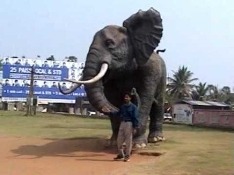 Vishakhapatna Borra Caves and Araku Valley Complete Sightseeing Full Movie