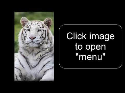Tiger Wallpapers Free Full Hd Images For Phone 4k Apps On Google Play