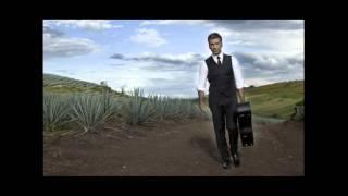 Alejandro fernandez - Se Me Va La Voz