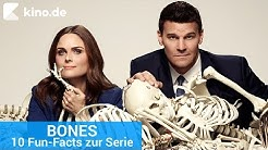 BONES: 10 Fun-Facts zur Serie