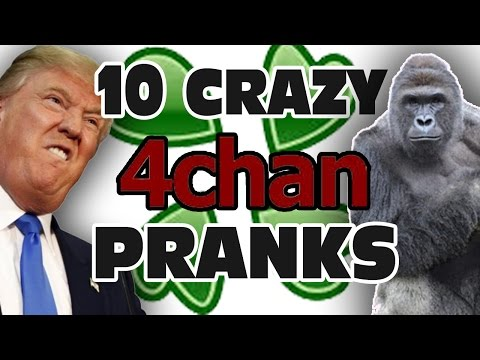 Top 10 Craziest 4chan Pranks - GFM (Part 4)