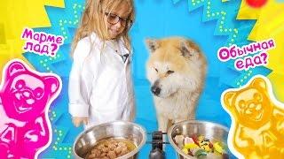 Обычная Еда против Мармелада Челлендж! Делаем ЭКСПЕРИМЕНТ! Real Food vs Gummy Food   Candy Challenge