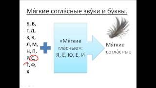 Бесплатный урок 11. Курсы русского как иностранного.