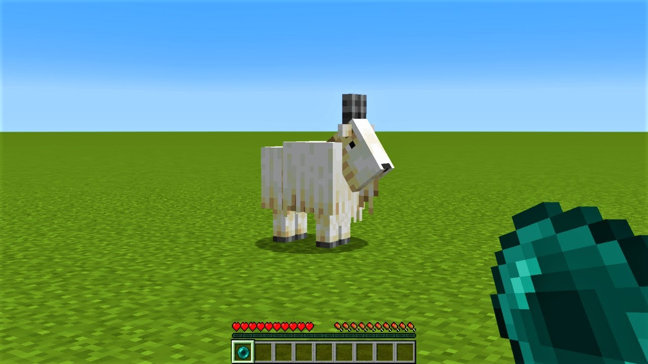 What's inside the Minecraft goat