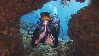 مسابقة أزياء تحت الماء بمناسبة هالوين