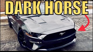 Why BUY a 2018 MUSTANG Ecoboost instead of a GT from a V8 Owner! (Full Review)