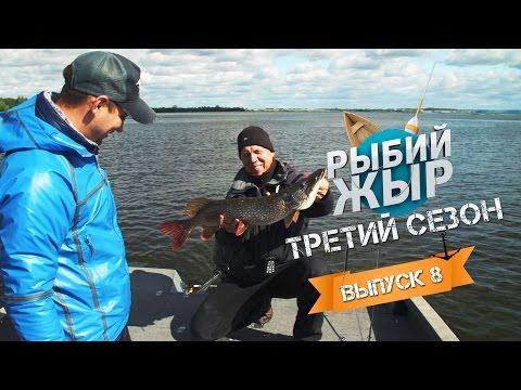 ловля спиннингом на чебоксарском водохранилище