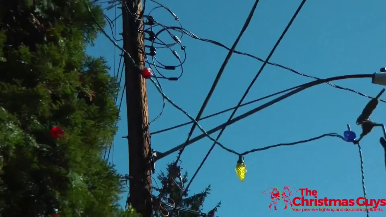 Professional christmas light installation tips how to hang professional christmas light installation tips how to hang christmas lights on tall outdoor trees aloadofball
