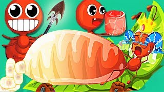 Baby Panda Explore The Life Of Ant Colonies - How To Fight And Store Food - Play Kids Games