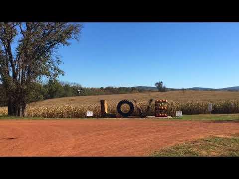 Liberty Mills Corn Maze
