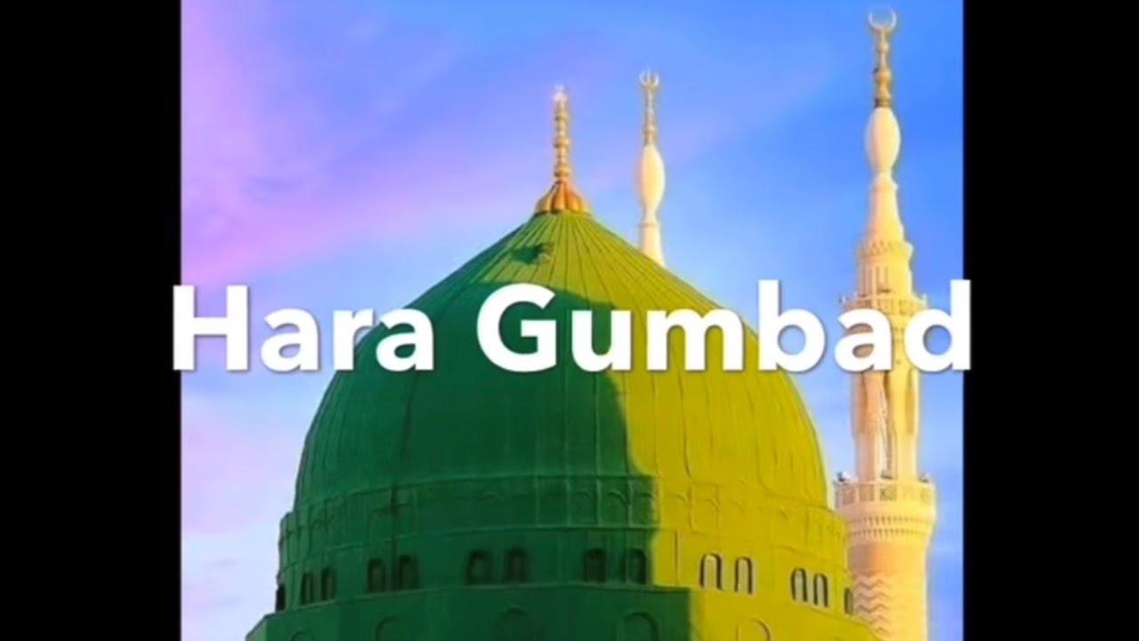 Reaction of Hara Gumbad Jo Dekhoge Zamana Bhool Jaoge naat sharif | SQ Naat Sharif | 24/02/2021.
