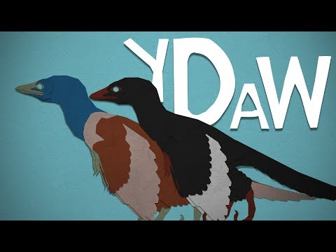 Archaeopteryx: Your Dinosaurs Are Wrong #21