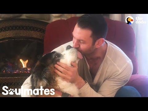People Give Their Rescue Pets the Most Love  | The Dodo Soulmates