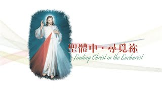 愛 ● 常傳 - 聖體中 ● 尋覓祢 Finding Christ in the Eucharist thumbnail