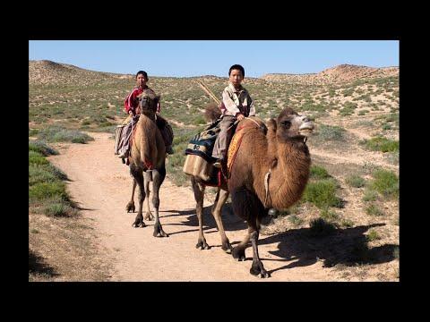 中国の少数民族の少年2人が旅する、異色ロードムービー