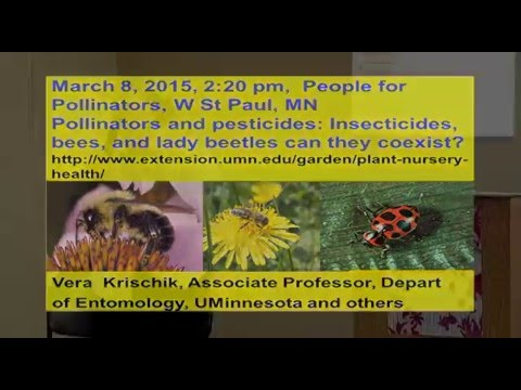 Pesticides and Pollinators . Can We Co-Exist