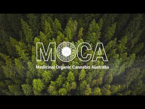 Medicinal Organic Cannabis Australia (MOCA) Our Vision And Philosophy