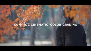 Sony A7C 4K Cinematic Color Gr…