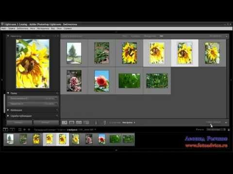 скачать бесплатно программа для просмотра и редактирования фотографий - фото 8