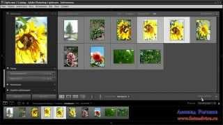 Программа для просмотра и редактирования фотографий(В видео уроке рассматривается программа для просмотра и редактирования фотографий., 2012-08-28T06:46:16.000Z)