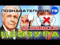 Медицинская цензура: запрещено на телевидении (Познавательное ТВ, Иван Неумывакин)