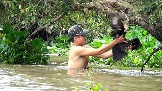 Săn bắt vịt trời có 1 không 2 - Quá may mắn bắt được con vịt lạc giữa sông lớn | Đời Sống Dân Dã