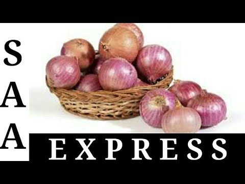 Best benefits of onion |piyaas Kay faidhay for our family and friends |SAA EXPRESS.