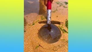 การค้นพบลูกแก้ววิเศษริมหาด-ว้าว-รวมคลิปความพึงพอใจ