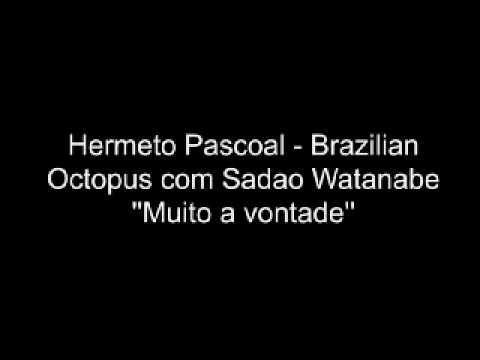 Hermeto Pascoal Brazilian Octopus e Sadao Watanabe  Muito a vontade