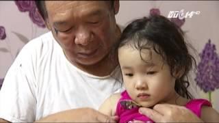 (VTC14)_Hà Nội: Kiến ba khoang tấn công dân chung cư