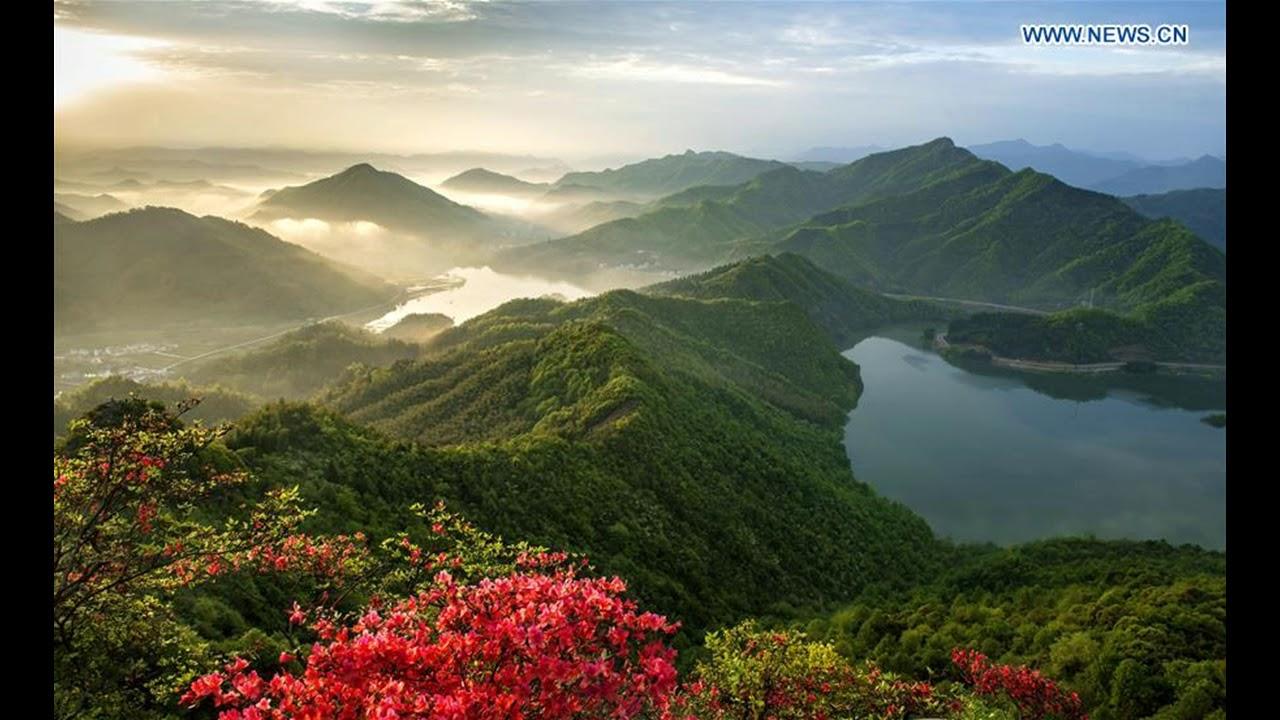 xinhua china anhui laian pond cypress scenery scenery - 1200×738