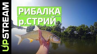 РИБАЛКА на річці СТРИЙ / Рыбалка на р. Стрый | UPSTREAM
