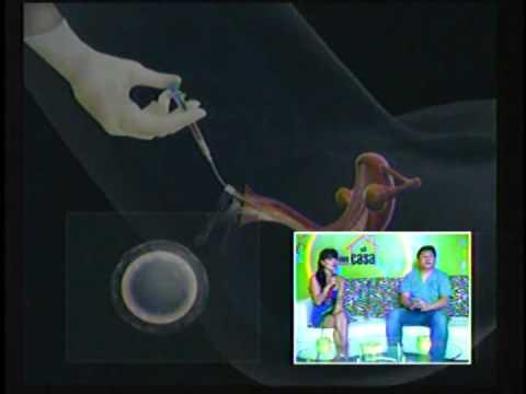 como en casa chiclayo - inseminación artificial - youtube