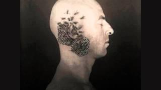 Björk, Tricky - Headphones (Digital Warfare's Clip Mix)
